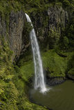 Bridal Veil Falls, Waikato Stock Images