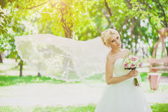 Bridal Veil in the wind Stock Photo