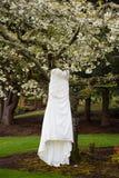 Bridal Wedding Dress Hanging In Tree Stock Image