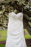 Bridal Wedding Dress Hanging In Tree Stock Images