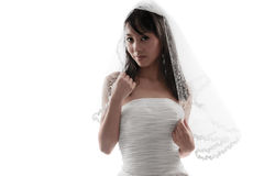 Bridal white Royalty Free Stock Image