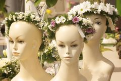 Bridal wreath Stock Photo