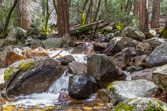 Bridalveil Creek IV Stock Photo