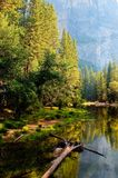 Bridalveil liten vik i Yosemite Royaltyfria Foton