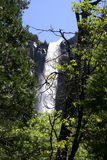 BridalveilFalls. Bridalveil Falls - Yosemite National Park royalty free stock image
