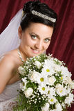 The bride з colors Royalty Free Stock Photos