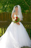 Bride. Poses on her wedding day Stock Images