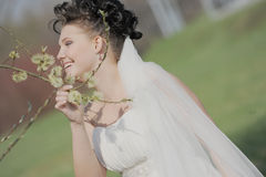Bride. Smiling ant holding tree branch Stock Images