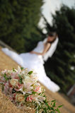 Bride. Royalty Free Stock Photography