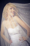 The Bride. Posing under the wedding veil Royalty Free Stock Photography