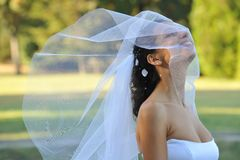 Bride. Smiling bride with a veil royalty free stock images
