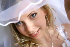 Bride. With a white veil Stock Photos