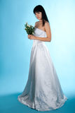 Bride. Young beauty bride isolated on blue background Royalty Free Stock Images