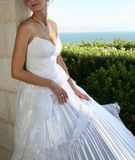 The bride. Royalty Free Stock Photo