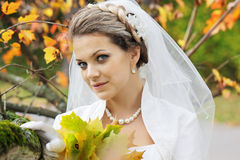 The Bride Stock Photography