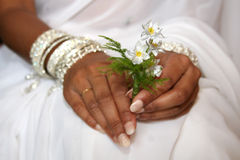 Bride. Indian Bride holding flowers with white saree Royalty Free Stock Images