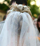Bride. With white veil Royalty Free Stock Photo