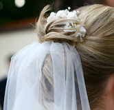 Bride. Wedding hairstyle of bride with white veil Royalty Free Stock Images