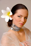 Bride. Beautiful extravagant bride with fashionable make-up Royalty Free Stock Photos