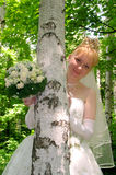 Bride 6 Stock Photo