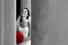 Free Bride Royalty Free Stock Photo - 6059325