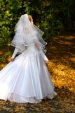 Bride. The bride in park stock image