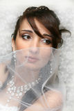 Bride. Beautiful bride on white textured backgorund royalty free stock image