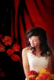 Bride. Wedding portrait,on a Red background Stock Photography