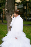 The bride. The beautiful bride in park royalty free stock photo