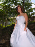 The Bride Royalty Free Stock Photography