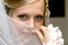 Bride. Beautiful bride with a veil Royalty Free Stock Image