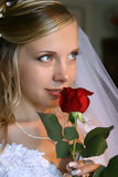 Bride. Beautiful bride with red rose Royalty Free Stock Photo