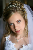 Bride. Portrait of young beautiful bride Royalty Free Stock Photography