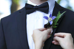 Bride adjusting boutonniere on grooms jacket royalty free stock photo