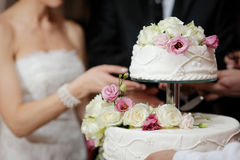 Free Bride And Groom Cutting Cake Royalty Free Stock Images - 16733669
