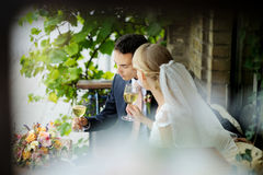 Free Bride And Groom Drinking Wine Royalty Free Stock Images - 29257299