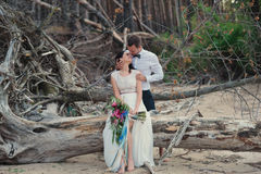 Free Bride And Groom On Nature Smile Royalty Free Stock Photography - 66157327