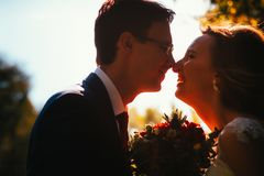 Free Bride And Groom Silhouettes On The Background Of The Sky Park Stock Photo - 127204090