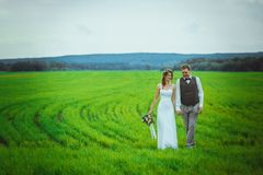 Free Bride And Groom Stand On The Background Of The Field Royalty Free Stock Photos - 127203918