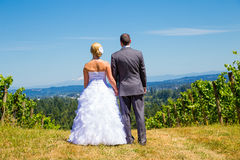 Bride And Groom With Fabulous View Royalty Free Stock Image