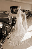 Bride and antique cars Royalty Free Stock Image