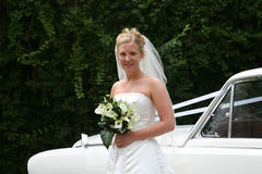 The Bride Arrives :2. The bride steps out of her car Stock Image