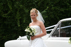 The Bride Arrives. The bride steps out of her car Stock Photo