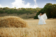 Bride in autumn field Stock Photos