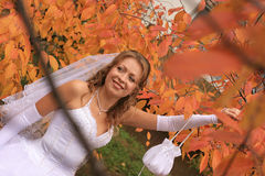 Bride in autumn leaves Royalty Free Stock Photography