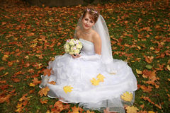 The bride in autumn park Stock Photos