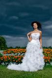 Bride on a background of black clouds and flower beds Stock Photography