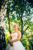 Bride on the background of the forest Stock Images