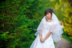 Bride on a background of green trees Brunette Royalty Free Stock Photo