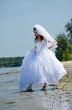 Bride on a beach. The bride on a beach walks barefoot Stock Photography